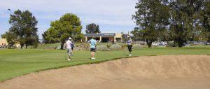 membership-westward-ho-golf